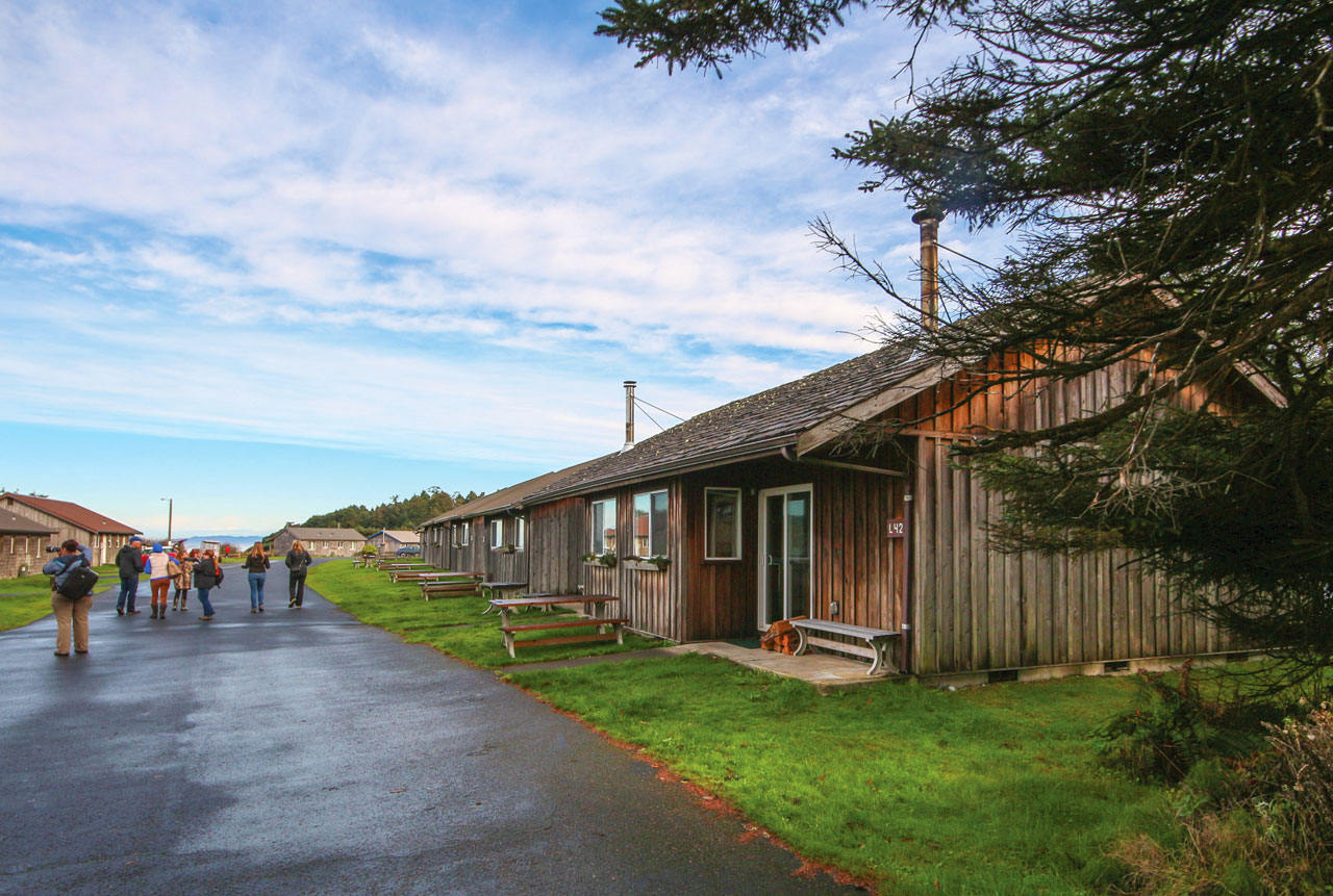 "Kalaloch Cabins are our ""inside row"" of cabins, but many still feature great views!"