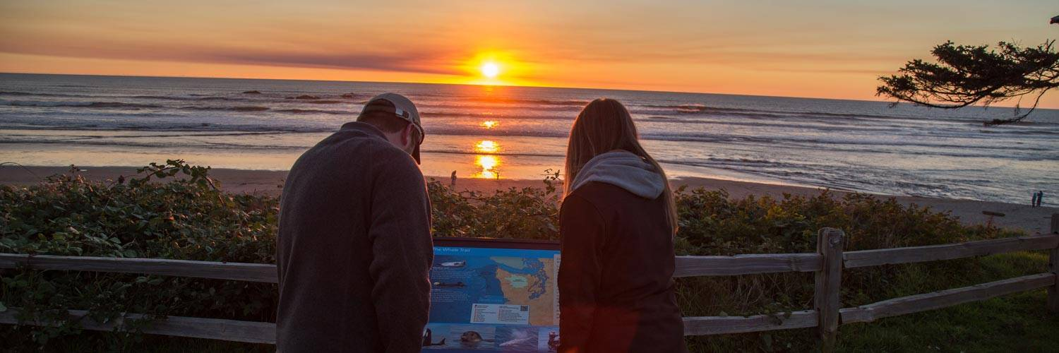 Find out about the beautiful natural environment surrounding Kalaloch Lodge.
