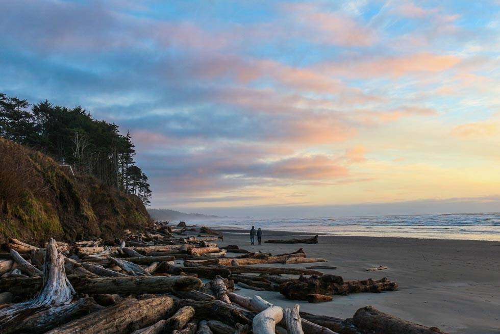Walk Kalaloch's inviting driftwood-edged beaches at sunset.