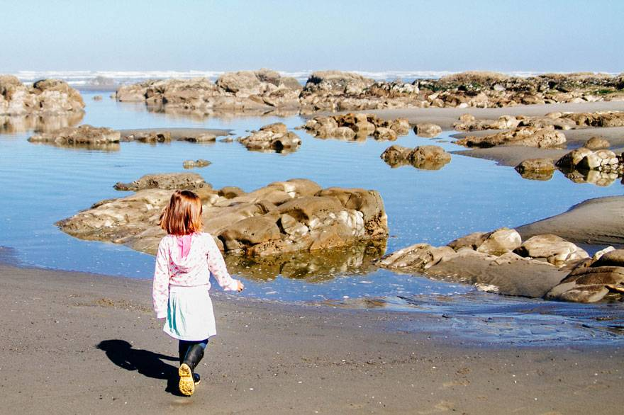 Kids love the activities at Kalaloch Lodge - from exploring the beaches to becoming an Ocean Stewards Junior Ranger.