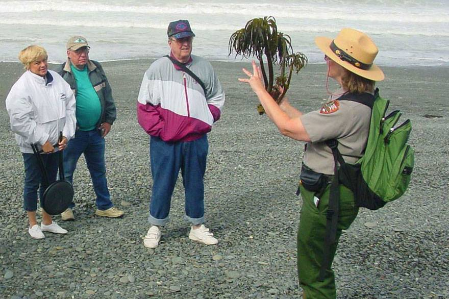 Enjoy walks and talks in Olympic National Park with fun and insightful ranger programs.