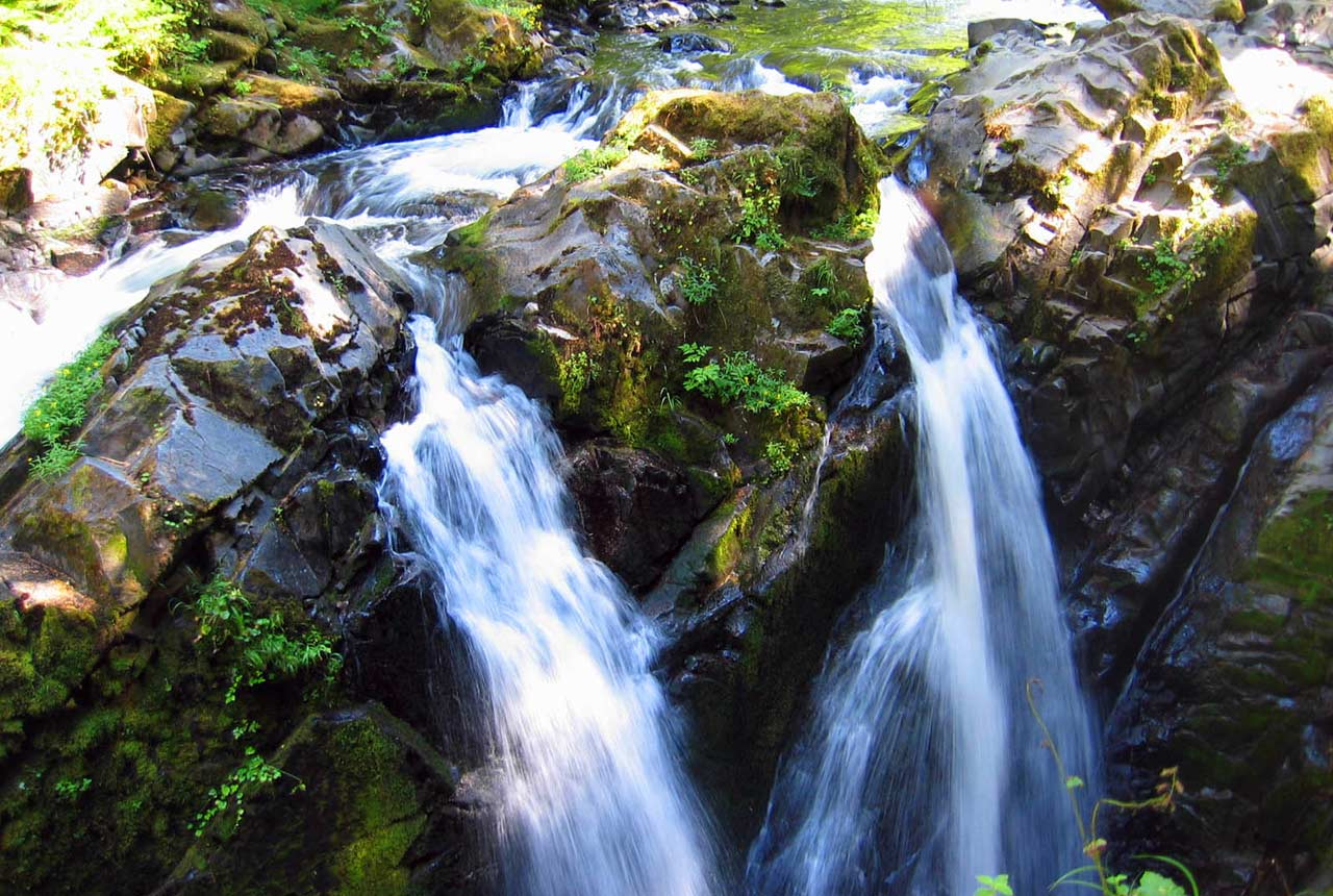 Visit Sol Duc Hot Springs near Kalaloch Lodge
